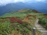 頂上まで続く階段登山道